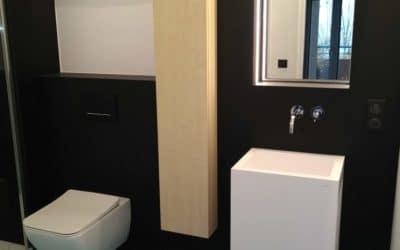 Rénovation d'une salle de bain Evian 2016